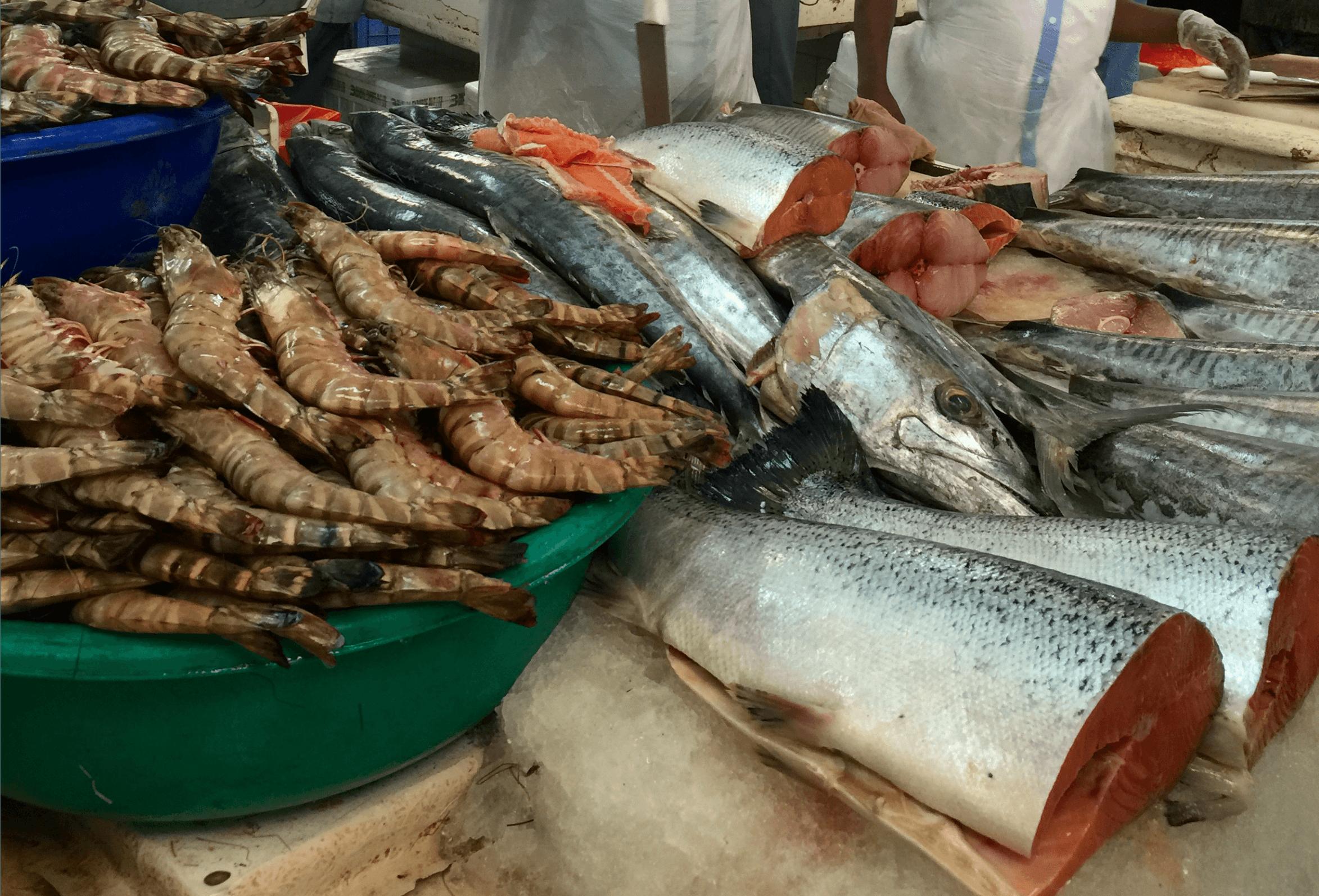 Fish Market 4