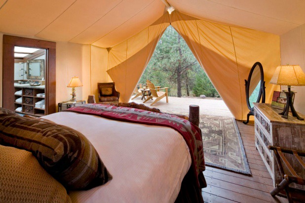 Go Glamping: Paws Up